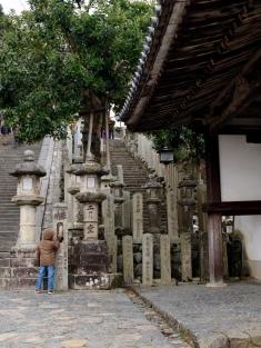 Shrine lamps.