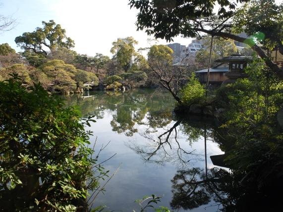 The pond is shaped like kokomo mind character