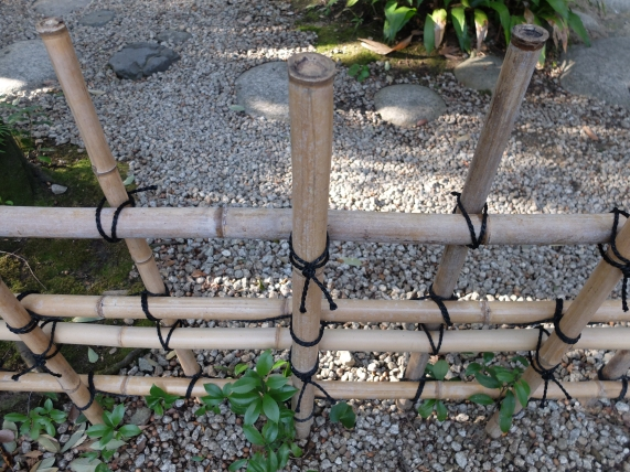 When the bamboo ages it will go brown like this. The fence will last 3-5 years. These knots are much neater than ours!