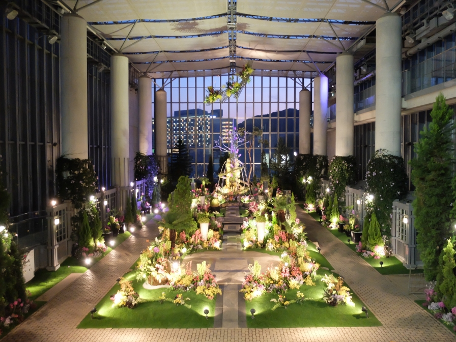 Orchid display at night