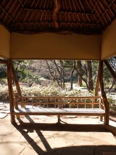 Brilliant tea house made of azalea wood!