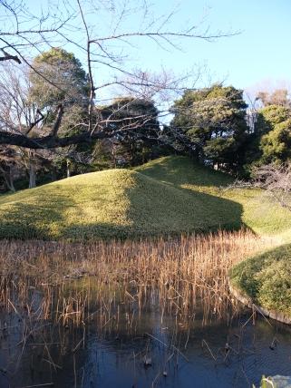 Tellytubby mounds