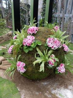 Big chokedamp, lots of primula. Lots of moss-patching and chicken wire and swearing went into this
