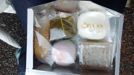 Sweets! The one with the leaf is sakura (cherry blossom) mochi wrapped in a salty pickled cherry leaf