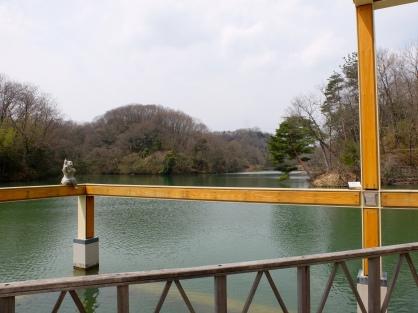 The lake looking towards the natural habitat