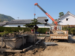 Preparing MASSIVE bonsai for shipping overseas