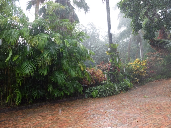 When it rains in Florida, it really rains