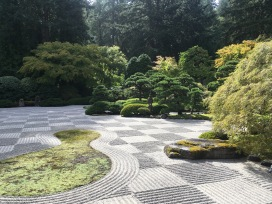 And even visited some Japanese Gardens (this is Portland)